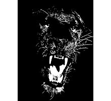 BLACK PANTHER Photographic Print