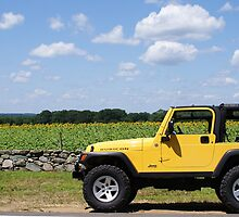 Yellow Jeep against Yellow Sunflowers by kalitarios