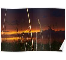 Sunset beyond the dunes Poster