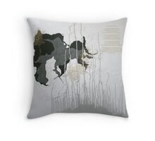 the colour or son-light...complete with poem Throw Pillow