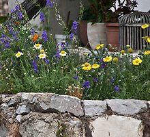 Greek Rock Garden by phil decocco