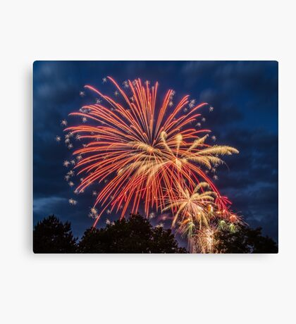 Canada Day 2014 Canvas Print