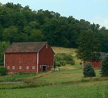 (Barn calendar) The Country Life by vigor