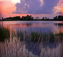 Happy Sunset by Susan  Kimball