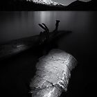 Point/Counterpoint B/W by Tula Top