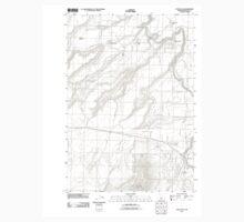 USGS Topo Map Oregon Cline Falls 20110826 TM Kids Tee