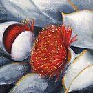 Eucalyptus Macrocarpa    2 by Vickyh