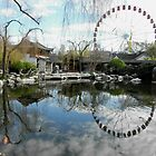 The Chinese Gardens and Darling Harbour, Sydney, Australia. by kaysharp
