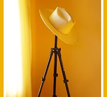 Home is where you hang your hat! by Eleanor Wylie