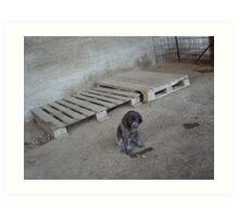 fULL...UNO DEI DUE NUOVI CUCCIOLI...&&..  RB EXPLORE FEATURED 16 LUGLIO 2012  &&&& Art Print