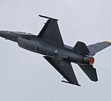F-16 Falcon by Daniel McIntosh