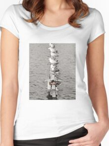 Sea Birds - And a Duck! Women's Fitted Scoop T-Shirt