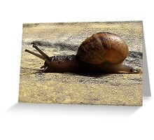 09 - SPEEDY THE SNAIL - DAVE EDWARDS - 2011 Greeting Card