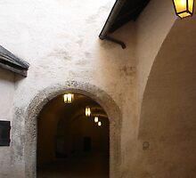 Into the Castle  by Ellanita
