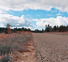 Road by tutulele
