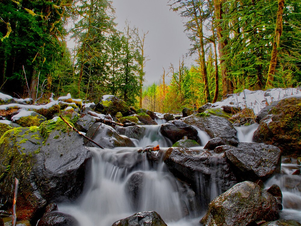 Just Let It Flow ~ Oregon Cascades ~ by Charles & Patricia   Harkins ~ Picture Oregon