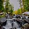 Just Let It Flow ~ Oregon Cascades ~ by Charles & Patricia   Harkins ~ Picture Oregon