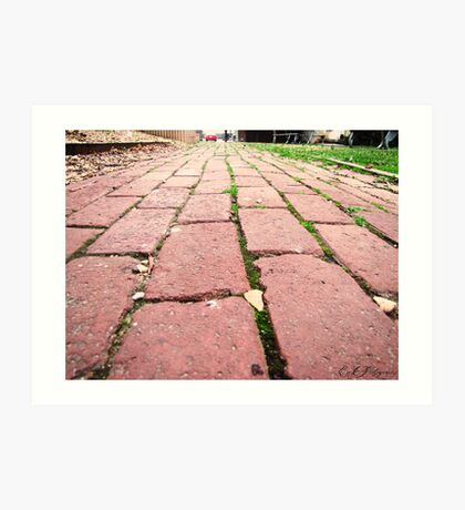 follow the brick road Art Print
