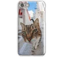 Big Head Cat in Greece iPhone Case/Skin