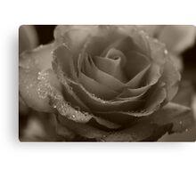 Mono Rose Canvas Print