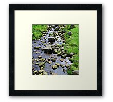 A Touch Of Greenery Framed Print