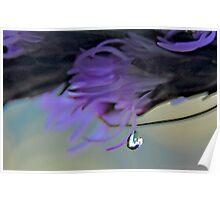 violet tear Poster