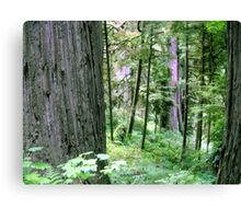 Forest Quiteness Canvas Print