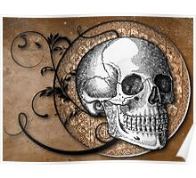 Beautiful Bones In Sepia Poster