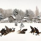 Snow and Geese by Cyn  Valentine