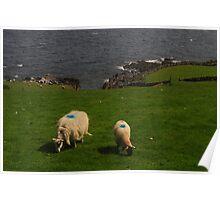 Blue Dot Sheep Poster
