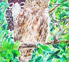 Spirit of the Barred Owl by Jennifer Ingram