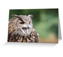 Eurasian Eagle Owl - Parc Omega - Canada Greeting Card