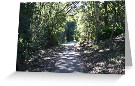 Pathway by Rob Walmsley-Evans by Access Arts Camera Wonderers