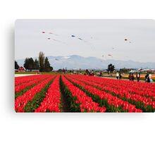 Tulip Time 9 Canvas Print