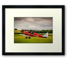 Tiger Moth Framed Print