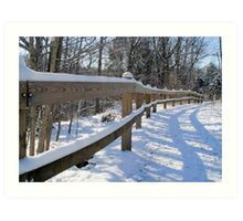 Fence rail Art Print