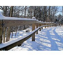Fence rail Photographic Print