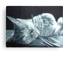 Sleepy cat :) Canvas Print