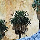 Palm trees - Oasis Cañon del Colca by Valentina Silva
