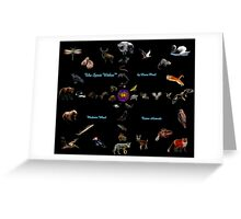 The Spirit Within-Medicine Wheel Complete by Liane Pinel Greeting Card
