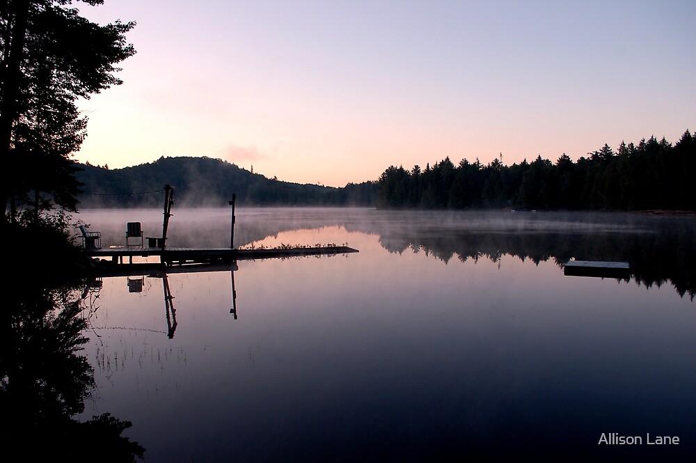 Morning on the Lake by Allison Lane