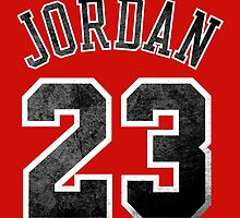 Jordan 23 Jersey Worn by MountyBounty