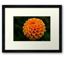 All Aglow Framed Print