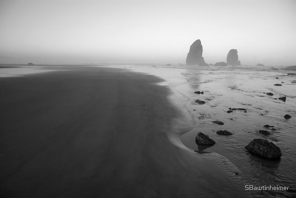 Cannon Beach by Sheri Bawtinheimer