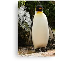 Hurry Up I'm Getting Wet Stood Here! Canvas Print