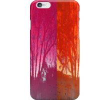 Reflections of the Four Seasons iPhone Case/Skin