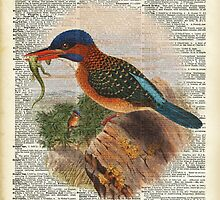 Kingfisher bird with a lizard,wild bird illustration Over a Old Dictionary by DictionaryArt