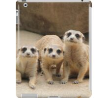 Our Cuteness Comes In A Package Deal, 3 For 1! iPad Case/Skin
