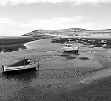 Low Tide in Newport Bay by itchingink