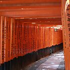Tori Gates at Fushimi Inari by cbrymnerphotos